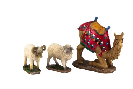 3pc Camel and Awassi Sheep set for 14