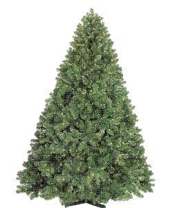12' Classic Slender Sequoia Tree with Metal Stand