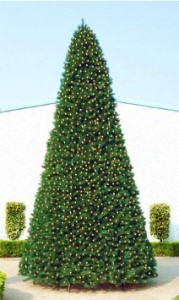 40' Classic Sequoia Tree with Metal Frame
