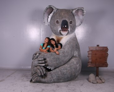 Life Like Koala Bear Cuddles Photo Op