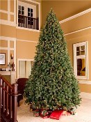 WL-TRSQ-06  - 6' Classic Sequoia Tree with Metal Stand