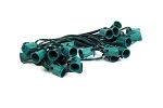 C9 25' Cordset E17 Sockets on Green Wire with 12